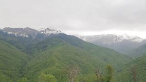 Snow-capped Caucasus mountains 003. Contrast of Caucasus mountains, green forests against snow-capped mountains stock video footage