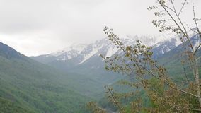 Snow-capped Caucasus mountains 004. Contrast of Caucasus mountains, green forests against snow-capped mountains stock footage
