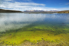Snow capped high mountains reflected in Lake Chungara. Lauca national park, northern Chile Stock Image