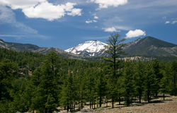 Snow-capped Humphreys Peak Stock Images