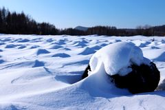 The snowy earth Royalty Free Stock Images