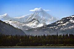 Snow Capped Mountain Alaska. Iconic snow-capped mountain rises above the evergreen trees on a beautiful blue sky day in Glacier Bay National Park, Alaska Stock Photography
