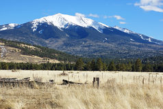 Snow capped mountain. Is the background of the grassland and trees in the San Fransisco peaks in northern Arizona Stock Photo