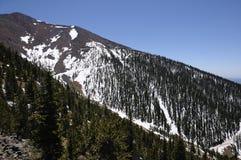 Snow Capped Mountain - Humphreys Peak. Humphreys Peak - the tallest mountain in Arizona with an elevation of 12637 feet (3852 m Stock Photos