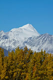 Snow capped mountain, Kluane National Park Royalty Free Stock Photography
