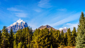 Snow capped mountain peaks in Yoho National Park Stock Photo