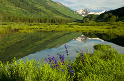Snow-capped mountain reflecting in lake. Stock Photo