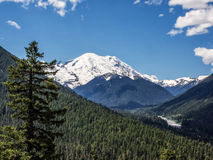 Snow capped mountain with trees in foreground Royalty Free Stock Photo