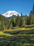 Snow capped mountain with trees and meadow Royalty Free Stock Photos