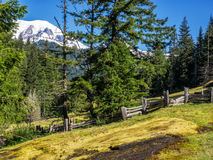Snow capped mountain with trees and meadow Stock Photo