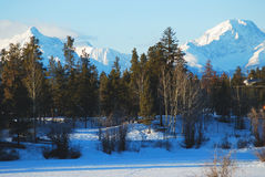 Snow Capped Mountains. Tall, snow capped Canadian mountains rise above the tree line in the foreground in this winter landscape stock images