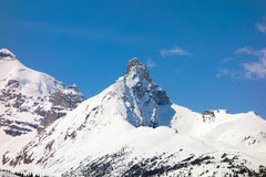 Snow-capped mountains in the canadian rockies Royalty Free Stock Images