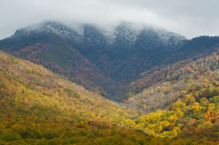 Snow capped mountains and fall colors Royalty Free Stock Image