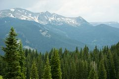 Snow capped mountains and greenery Royalty Free Stock Images