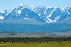 Snow capped mountains. And hills with pine trees in Altai Republic, Russia stock photo