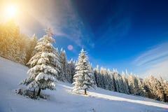 Snow-capped mountains Stock Photo