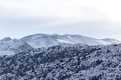 Snow-capped mountains of the Tian Shan in winter.  Stock Images