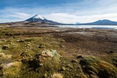 Snow capped Parinacota Volcano, Chile Stock Images
