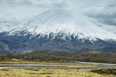 Snow capped Parinacota volcano Royalty Free Stock Images