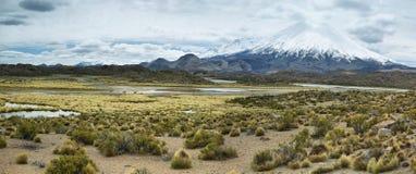 Snow capped Parinacota volcano Stock Photography