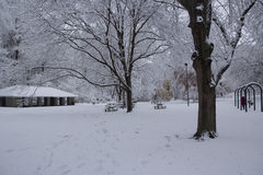 Snow capped park Royalty Free Stock Photography