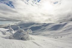 Snow-capped peaks of mountains. Snow-capped peaks of the Carpathian Mountains UKraina Stock Images