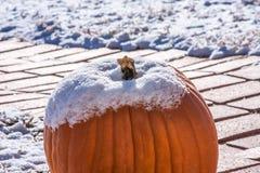 Snow-Capped Pumpkin Stock Photo