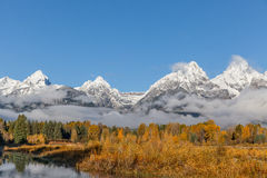 Snow Capped Tetons in Fall Stock Image