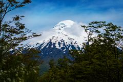 Snow capped volcano of Osorno Stock Image
