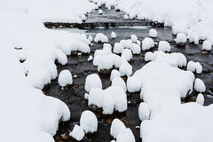 Snow caps on boulders in the mountain river Stock Images