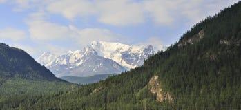 Snow caps of North Chuya ridge Stock Images