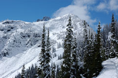 Snow in Cascade Mountains Stock Image