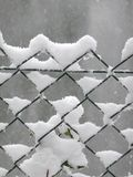 Snow caught in a wire mesh fence Royalty Free Stock Images