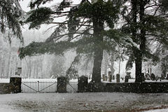 Snow at the cemetery. A snow storm at the cemetery Royalty Free Stock Photography