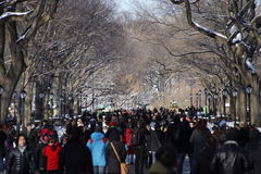 Snow in Central Park stock photos