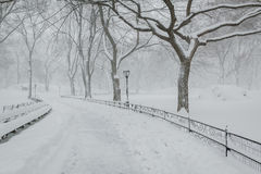 Snow in Central Park - Peaceful winter atmosphere. Quiet wintertime in Central Park: treelined path under the snow after an early morning snow storm. NYC Royalty Free Stock Photo