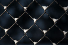 Snow on a chain link fence. S against a dark background Stock Photography