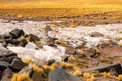 Snow in Chile Royalty Free Stock Photography