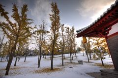 Snow Chinese Attic Stock Photo