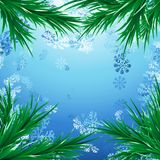 Snow Christmas background with green fir tree branches. Holiday blue snowfall background. Vector illustration Stock Images