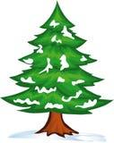 Snow christmas tree. Vector illustration shows the snow-strewn Christmas tree Stock Photography