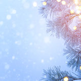 Snow Christmas tree and holidays light; Blue Christmas tree back Stock Image