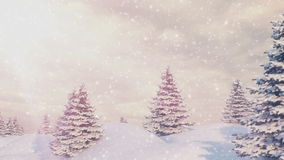 Snow and Christmas trees. stock footage