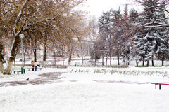 Snow in city. The first snow in city stock photos