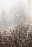 Snow in city Stock Image