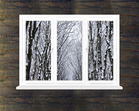 Snow-clad crowns of trees in the window. In the dark room Stock Photos
