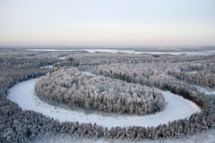 Snow-clad forest Royalty Free Stock Photos