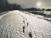 On the snow, clearly visible traces of a man, a black and white toned photo. _ Royalty Free Stock Photos
