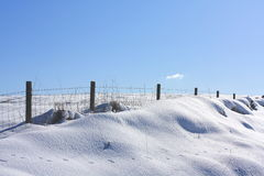Snow close up. Snow in the field close up Royalty Free Stock Image