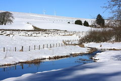 Snow close up. Beautiful wintery landscape in Scotland Royalty Free Stock Photography